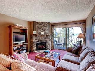 Ski Inn 313 - Steamboat Springs vacation rentals