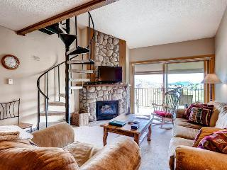 Ski Inn 331 - Steamboat Springs vacation rentals