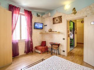 Penthouse 2bedroom terrace AngelsGateSanPietroRome - Vatican City vacation rentals