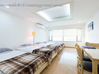 APT at Hongdae, Free portable Wi-Fi router(egg), B - Seoul vacation rentals