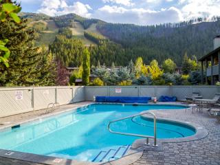 Year-round pool and sauna make this a standout property! - Ketchum vacation rentals