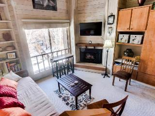 Rustic-chic studio with loft bed, near Dollar Mountain - Sun Valley vacation rentals