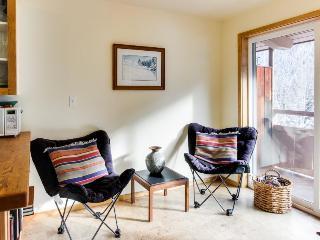 Cozy condo near the ski lifts! - Ketchum vacation rentals