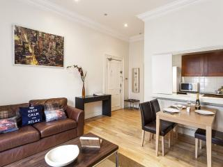 HYDE PARK -DELIGHTFUL- no stairs, FastWiFi, subway 1min - London vacation rentals