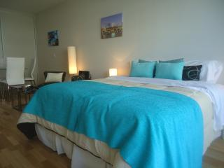 Buenos Aires Studio - Palermo - Capital Federal District vacation rentals