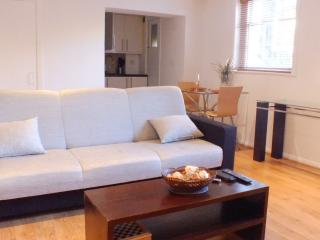 GRADE II LISTED ONE BED FLAT IN LONDON ZONE 2 - London vacation rentals