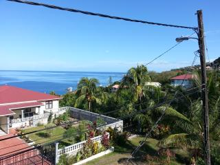 Nice 2 bedroom Roseau Apartment with Internet Access - Roseau vacation rentals