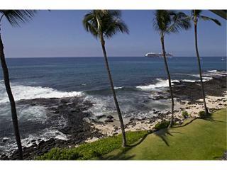 1 bedroom Apartment with Internet Access in Kailua-Kona - Kailua-Kona vacation rentals