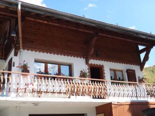 Cozy 2 bedroom Condo in Morzine-Avoriaz with Internet Access - Morzine-Avoriaz vacation rentals