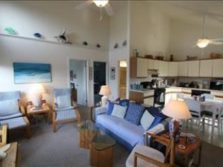 Parsons Folly 33233 - Cape May vacation rentals