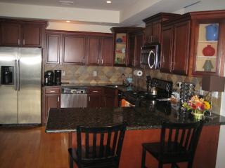 Luxury 3 Bedroom/2Bath Apt Overlooks New York City - Greater New York Area vacation rentals