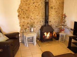 Smuggler's Cottage - Logburner, Pool, Alpacas - Whitchurch Canonicorum vacation rentals