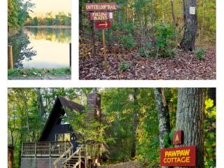A-Frame Pawpaw Cottage at Montfair Resort Farm - Charlottesville vacation rentals