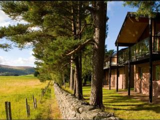 Nice Ballater vacation Lodge with Internet Access - Ballater vacation rentals