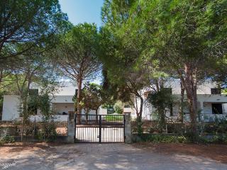 Holiday Apartment in Cala Liberotto less than 100 - Cala Liberotto vacation rentals