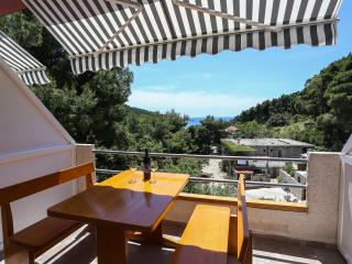 Perfect oasis apartments on Mljet.. - Saplunara vacation rentals