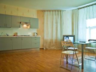 Apartment with Jacuzzi, WiFi internet and new eurostandart renovation. - Saint Petersburg vacation rentals