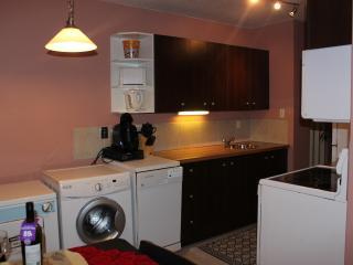 Bright&clean 1BD apt by LRT in centre of EDMONTON - Edmonton vacation rentals