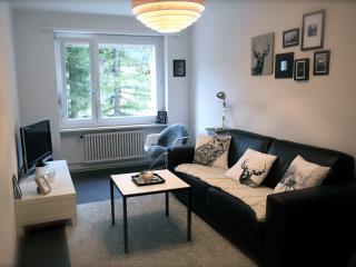 appartement d'architecte à Loèche-les-Bains - Leukerbad vacation rentals