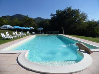 Luisa - Apt 1 - Castelnuovo di Garfagnana vacation rentals