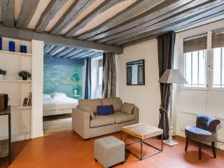 Perfect 1 bedroom Condo in Paris - Paris vacation rentals