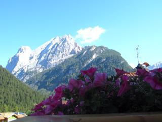 Cesa Jori: appartamenti nel cuore delle Dolomiti - Canazei vacation rentals