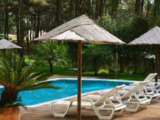 Spacious 7 bedroom Villa in Charneca da Caparica with Deck - Charneca da Caparica vacation rentals