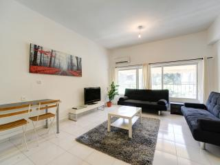 Spacious 2 BR By The Beach - Ben Yehuda st - Tel Aviv vacation rentals