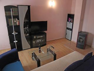 TH00107 Apartment Radnic / Two Bedroom - Vodnjan vacation rentals