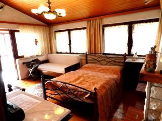 TH00160 Villa Matossi  / One Bedroom  Apartment A2 - Rovinj vacation rentals