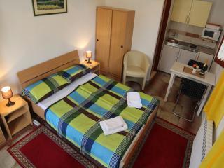 TH00207 Apartments Dobreva / Studio - Stavropol Krai vacation rentals