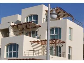 Apartment Aphrodite Beachfront - Guzelyurt vacation rentals