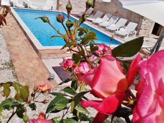 TH00246 Istrian Villa Laura Orihi - Barban vacation rentals