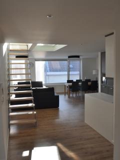RAAMHOF: space/light/highcomfort/quiet - Ghent vacation rentals