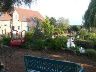 le saule et l'aubépine :le saule - Tournai vacation rentals