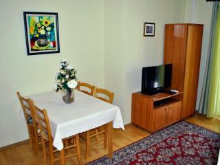 TH00370  Apartments Labinac / One bedroom A3 - Pula vacation rentals