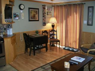 1BR/1BA Walk to Village Ski In/Out Wi-Fi - Snowshoe vacation rentals