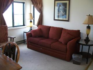 1BR/1BA Ski In/ Out - Walk to village Slopeside - Snowshoe vacation rentals