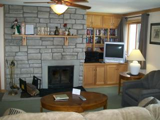 Mountain Lodge Super-sized living & kitchen area - West Virginia vacation rentals