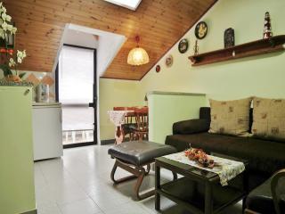 TH00408 Apartment Alida / two bedroom A1 - Porec vacation rentals
