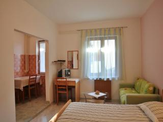TH00409 Apartments Nerina / Studio A1 - Novigrad vacation rentals