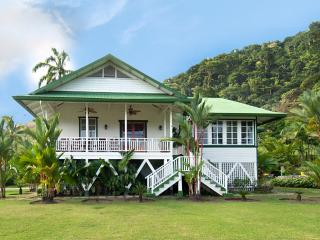 Bright 4 bedroom Golfito House with Deck - Golfito vacation rentals