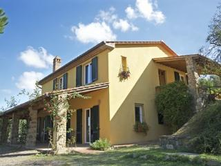 beautiful villa near Lucignano - Lucignano vacation rentals