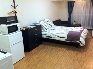 UNBEATABLE VALUE IN CENTRAL TOKYO! - Tokyo vacation rentals