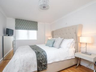 Boutique apartment in Oxford City - Oxford vacation rentals