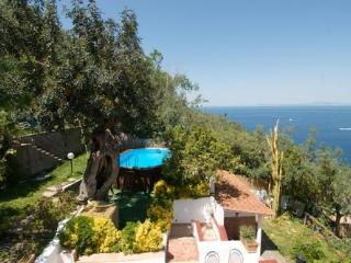 Villa Panorama in the heart of Sorrento Peninsula - Massa Lubrense vacation rentals