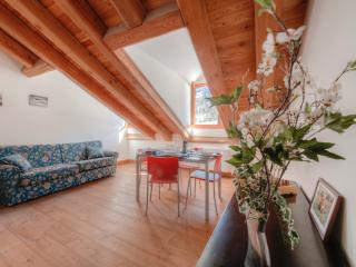Gran Paradiso - 3431 - Ceresole - Torino Province vacation rentals