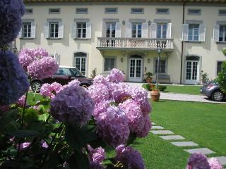 holiday apartment in villa near Lucca G4 - Santa Maria del Giudice vacation rentals