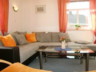 Cozy 1 bedroom Condo in Kurort Oberwiesenthal with Internet Access - Kurort Oberwiesenthal vacation rentals