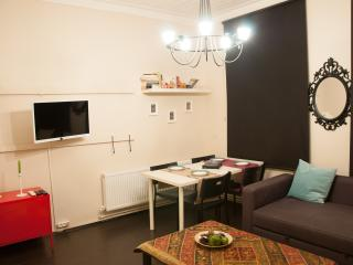 A flat that fusions history and comfort, in Galata - Istanbul & Marmara vacation rentals